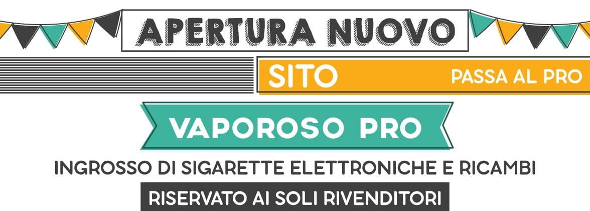 Ingrosso sigarette elettroniche