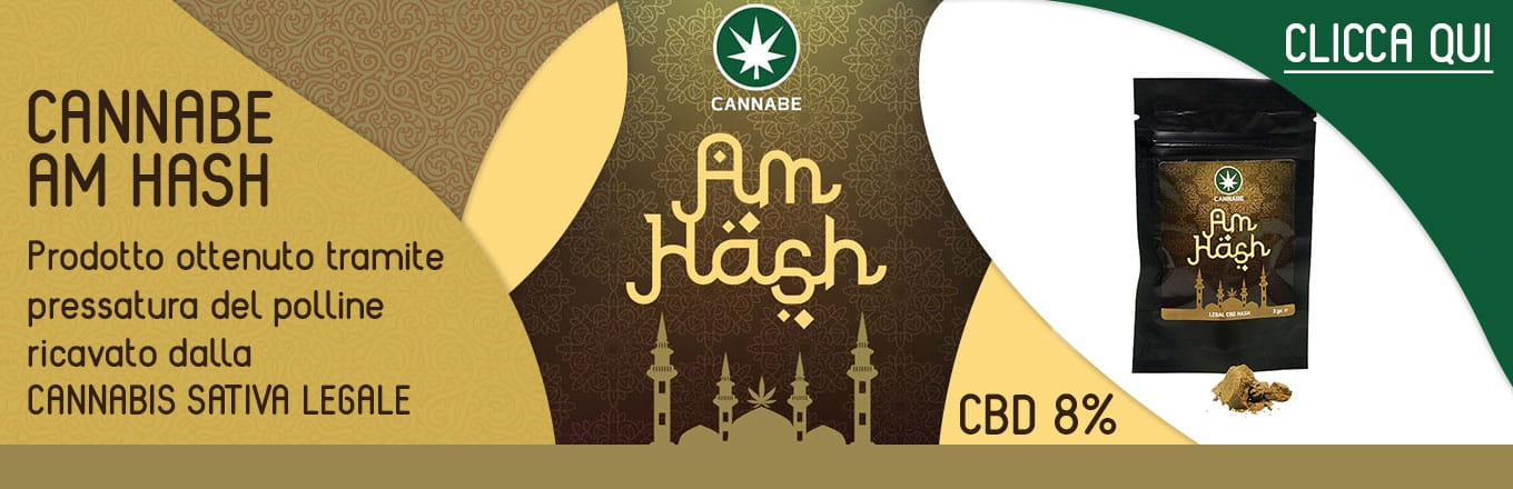 CannaBe CBD Am Hash